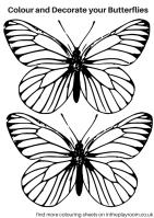Malvorlage Schmetterling Klein   tippsvorlage.info ...