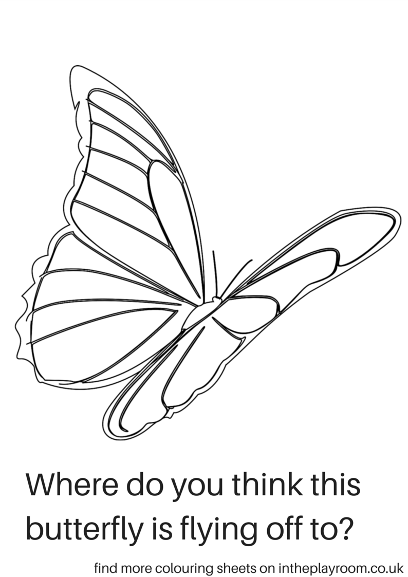 where do you think the butterfly is flying butterfly colouring sheet