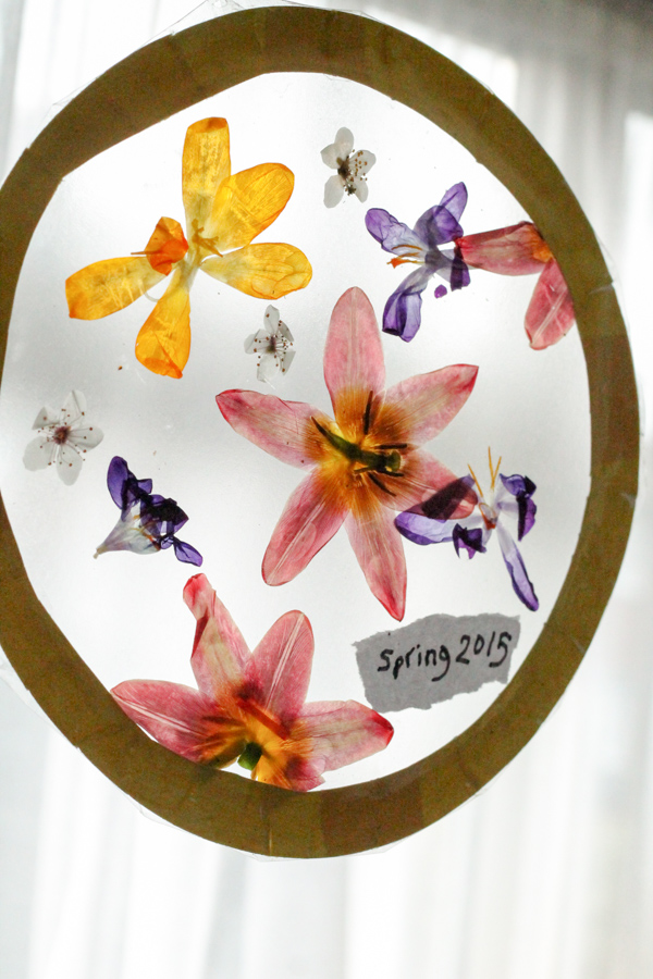 sun catcher with pressed dried flowers, and how to press flowers in the microwave