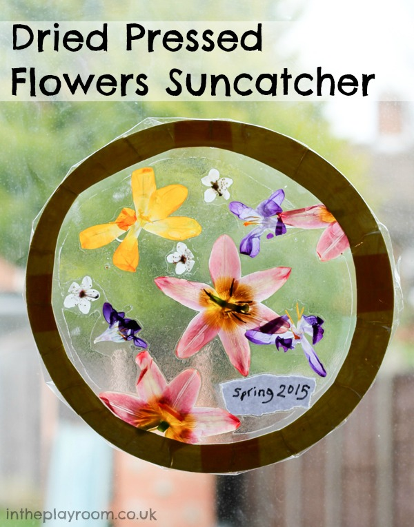 Springtime suncatcher with dried pressed flowers