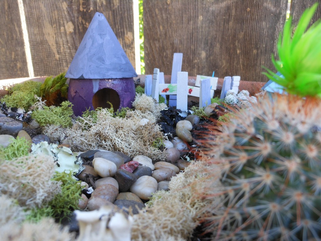 make-a-fairy-garden-for-your-backyard-3-1024x768