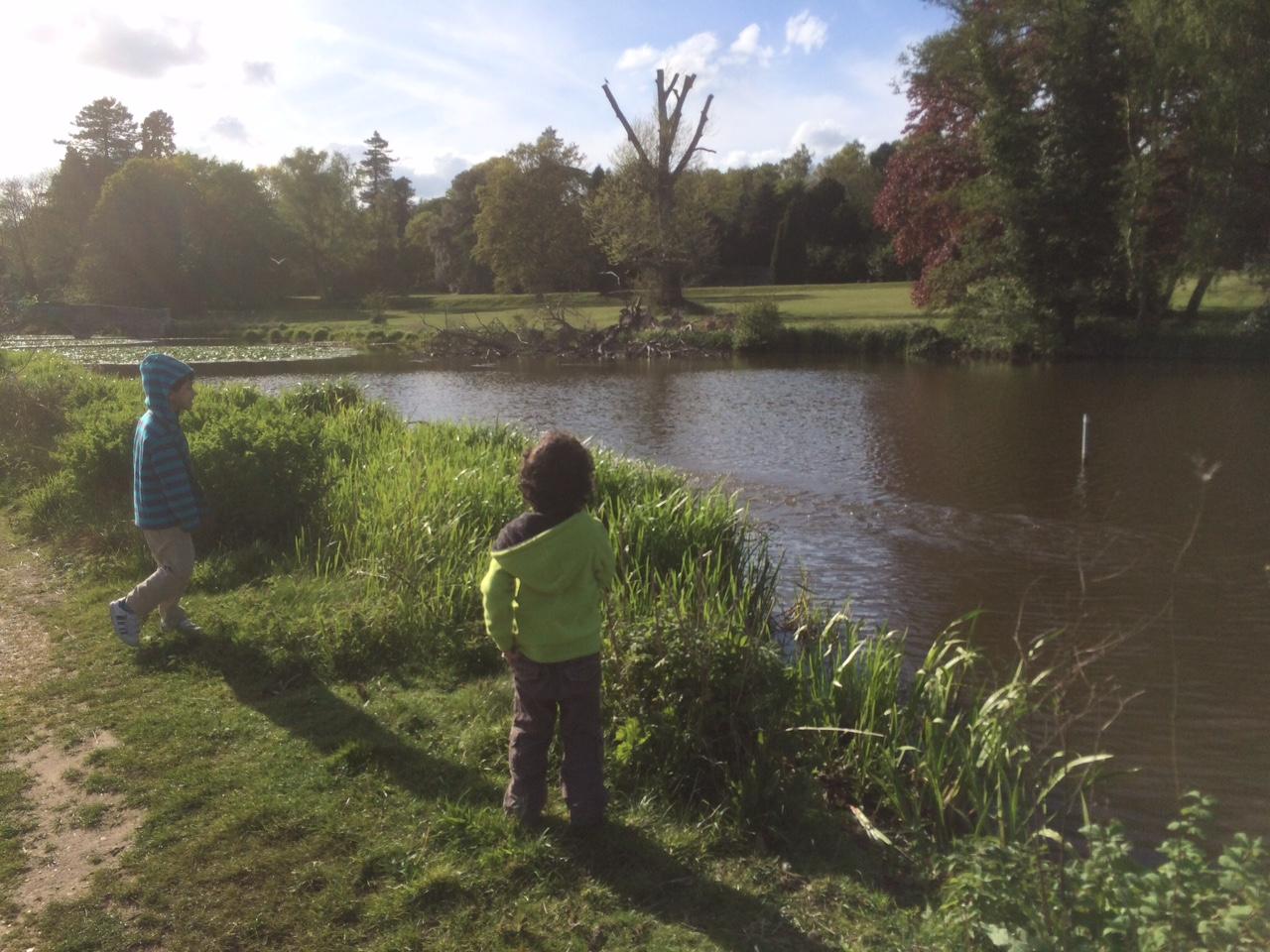 pond near waverley abbey