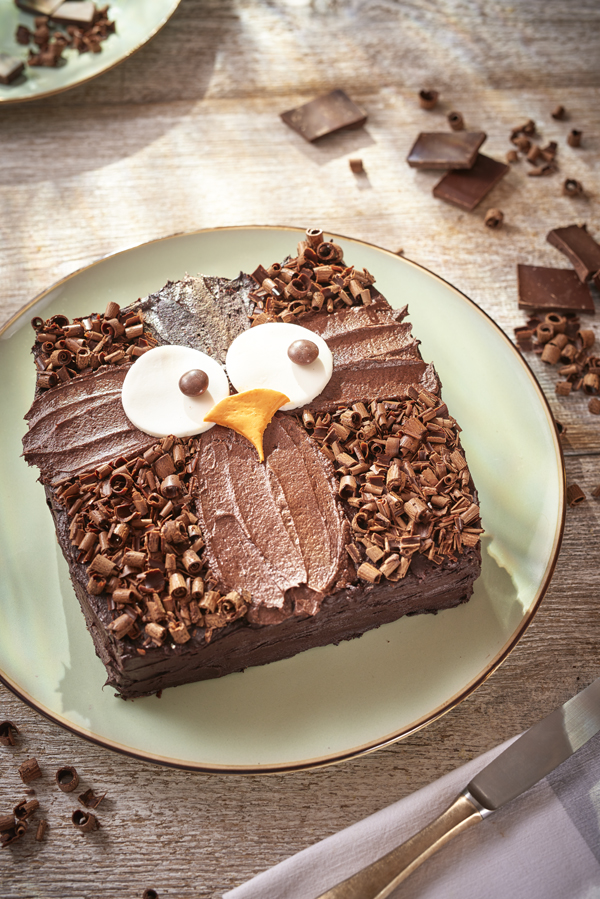Homemade Chocolate Cake Decorating Ideas : Owl Cake Step by Step Recipe and Easy Cake Decoration - In ...