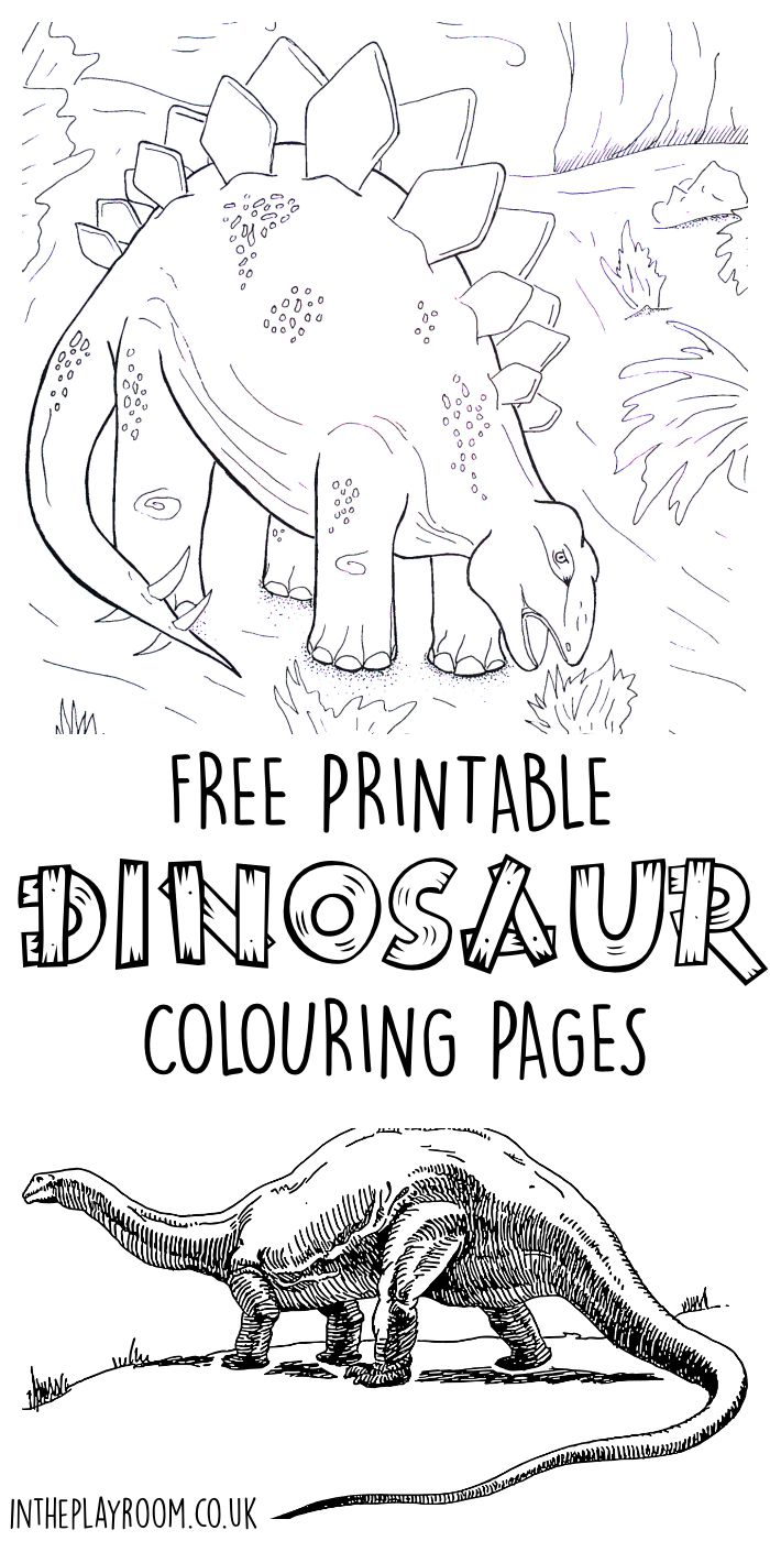 dinosaur colouring pages in the playroom. Black Bedroom Furniture Sets. Home Design Ideas