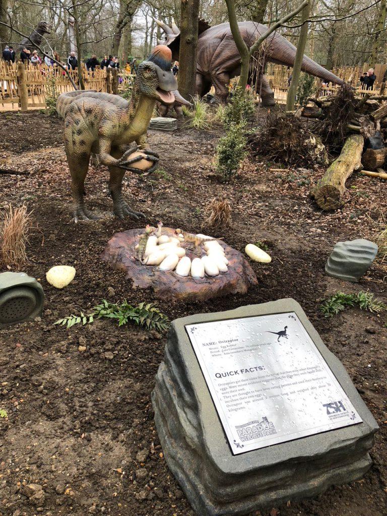 Oviraptor World of Dinosaurs at Paradise Wildlife Park