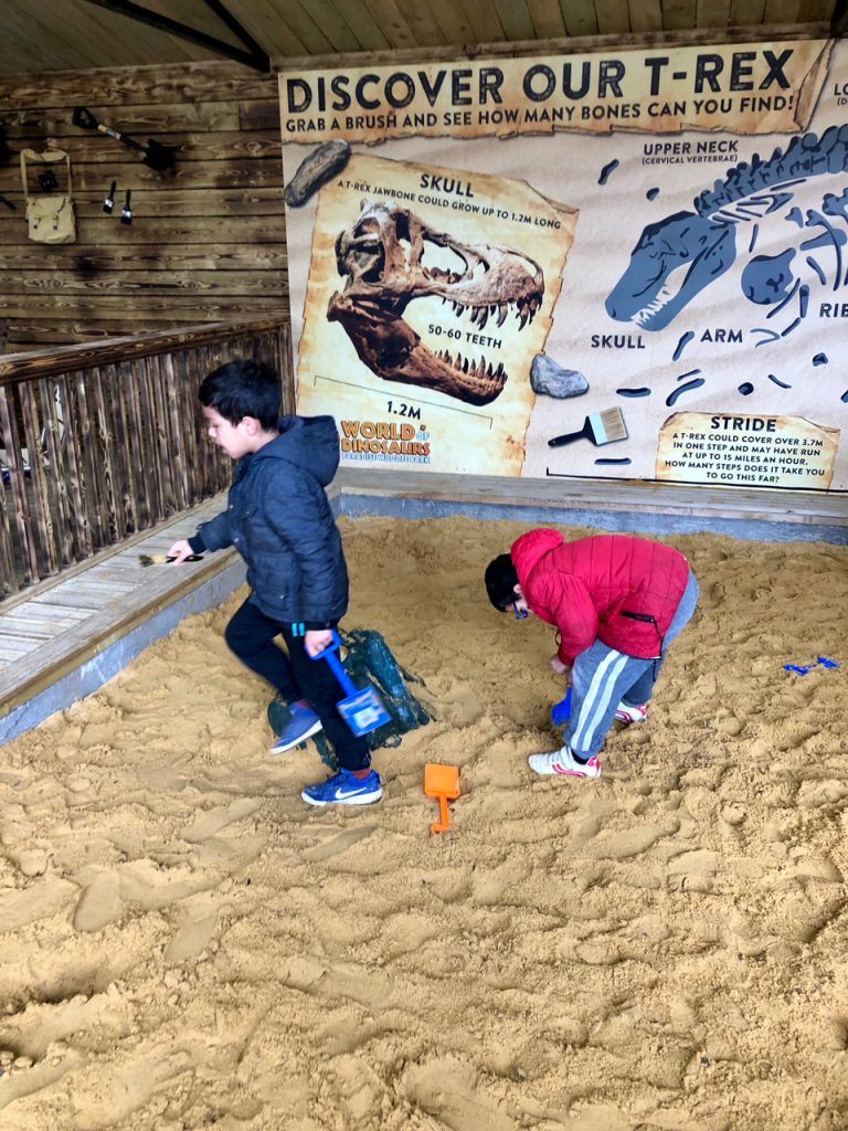 Dino Dig World of Dinosaurs at Paradise Wildlife Park