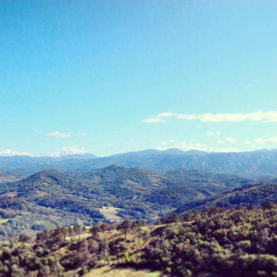 View somewhere around Štanjel.