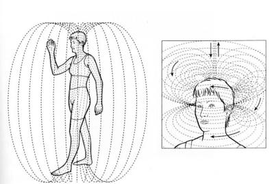 人間の磁場