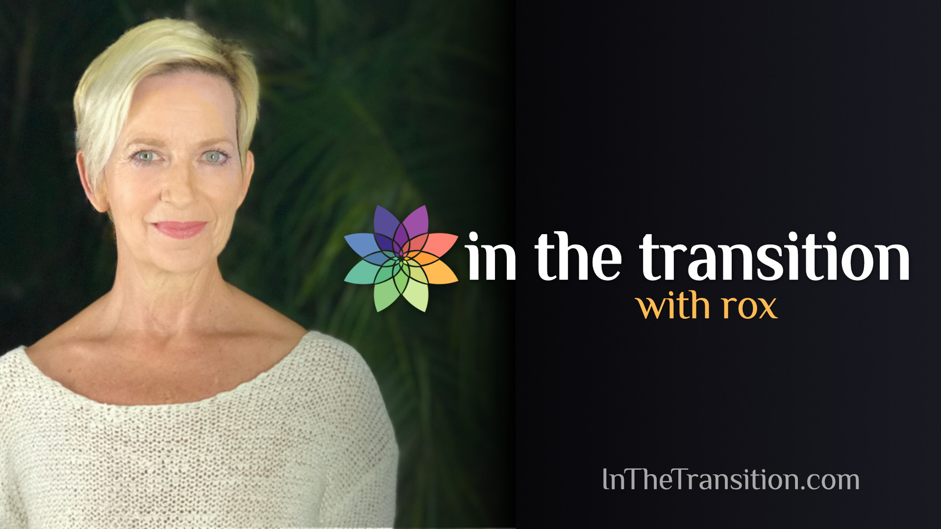 In the Transition with Rox, a podcast about consciousness
