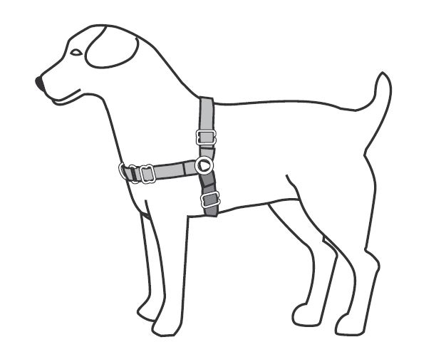 Support & Manuals: Easy Walk® Harnesses & Headcollars