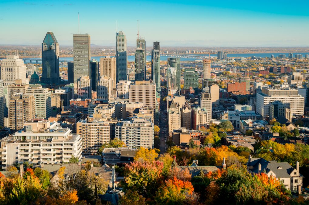 Wohnung mieten in Montreal  WGs  Zimmer  Nestpick