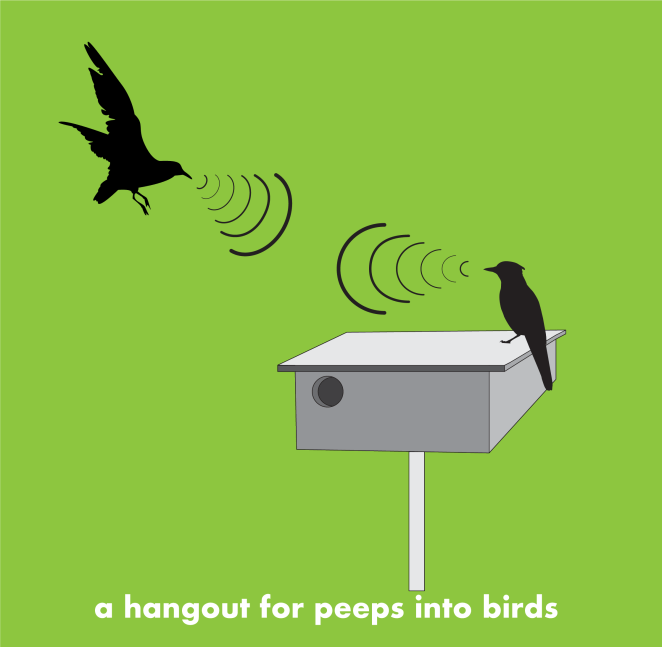 Connect with intobirds