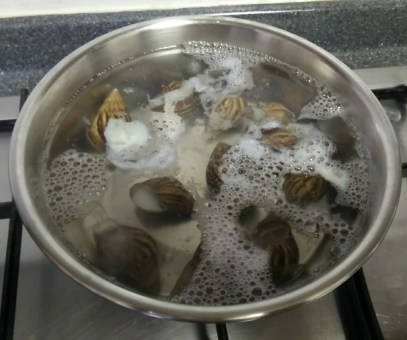 Boiling the snails to remove the meat.