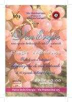 vinergie 10x15_def_Pagina_1 (1)