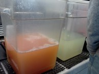 I think I got the lemonade and it was deliciously refreshing.