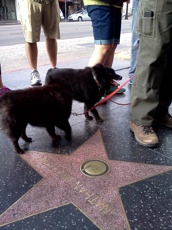 Ferris & Thelma