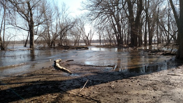Trail on Credit Island flooded by Mississippi River