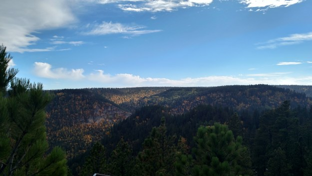 Looking back down into Spearfish Canyon from the Buzzard's Roost.