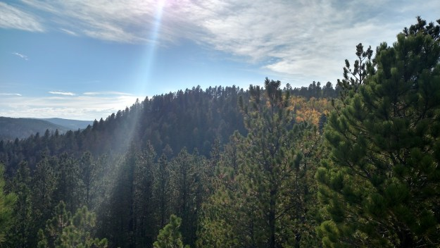 Spearfish Canyon, as seen from the Buzzard's Roost