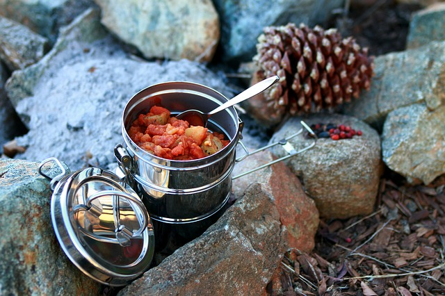 Best car camping stove for great meals