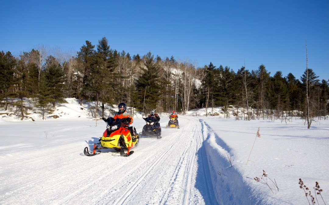 Snowmobile RAP Tour Round Algonquin Park