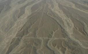 может следы сканирования? пустыня Наска