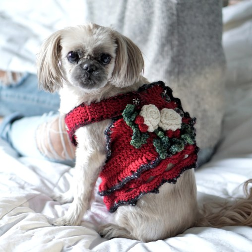 dog-dress-christmas-red6