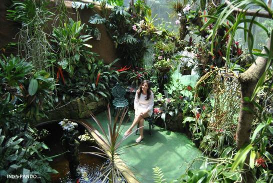 Giardini La Mortella a Ischia