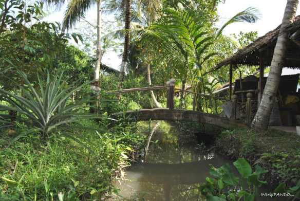 Ponte in legno su un canale del delta del Mekong
