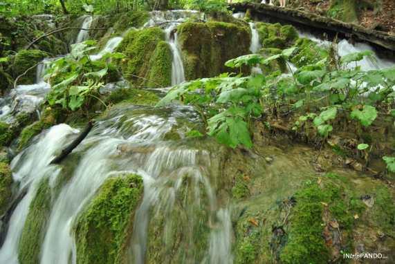 piccola cascata nel parco di Plitvice