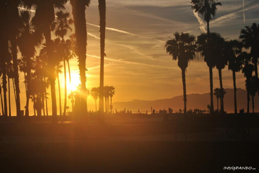 tramonto a Venice beach