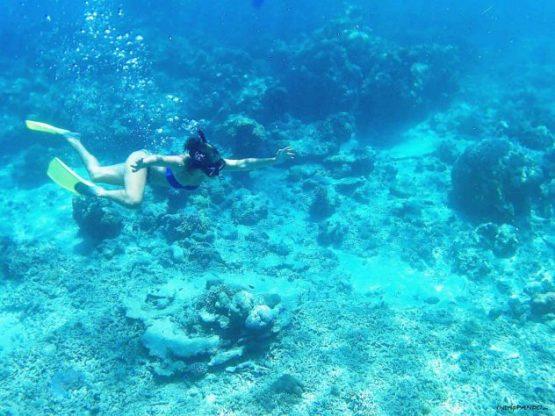 Immersioni alle Isole Gili