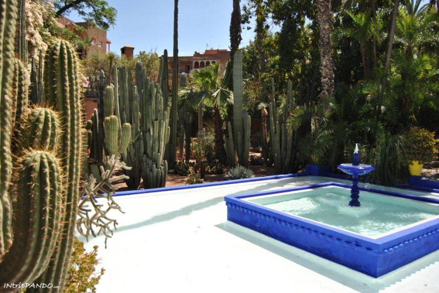 Fontana all'interno dei giardini Majorelle di Marrakech