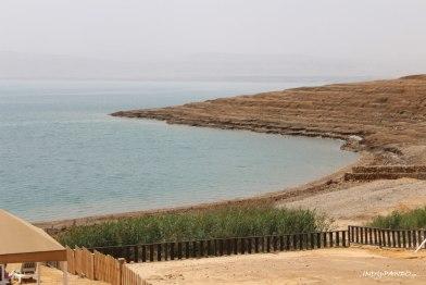 La costa prevalentemente rocciosa del Mar Morto
