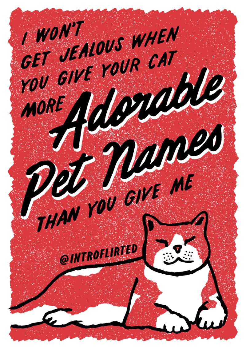 Introflirted #50 Pet Names by Josh Higgins