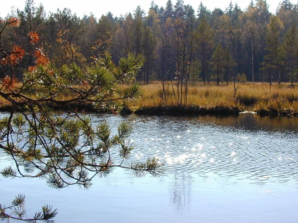 Introvert travel, Paimio, Finland