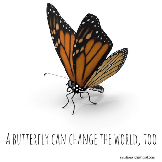 butterflies matter