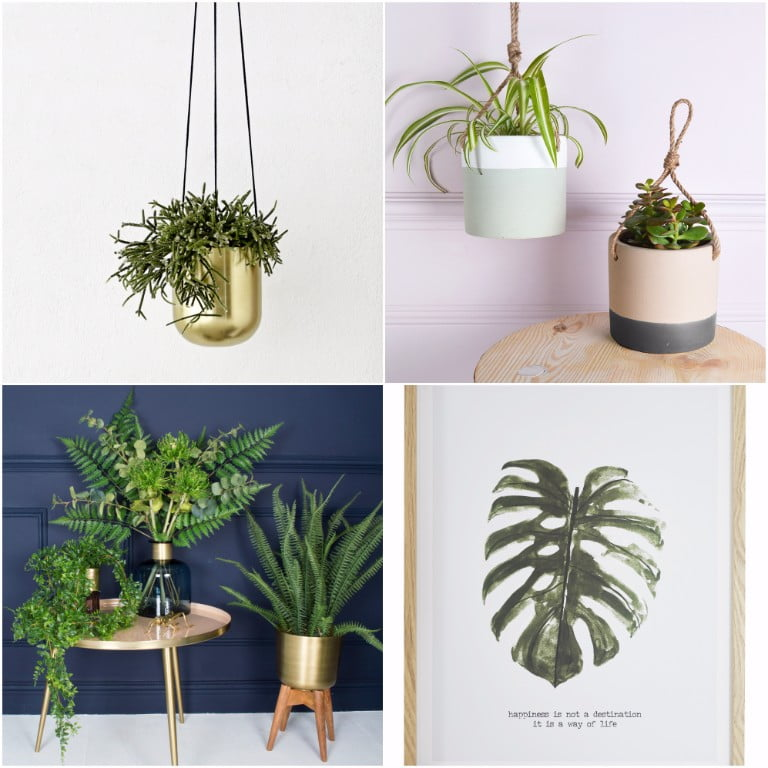 Ivoire Brass Plantholder - Mia Fleur - Hanging Ceramic Plant Pots - jd williams leave print