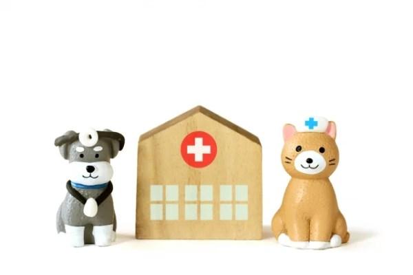 犬や猫の避妊・去勢問題