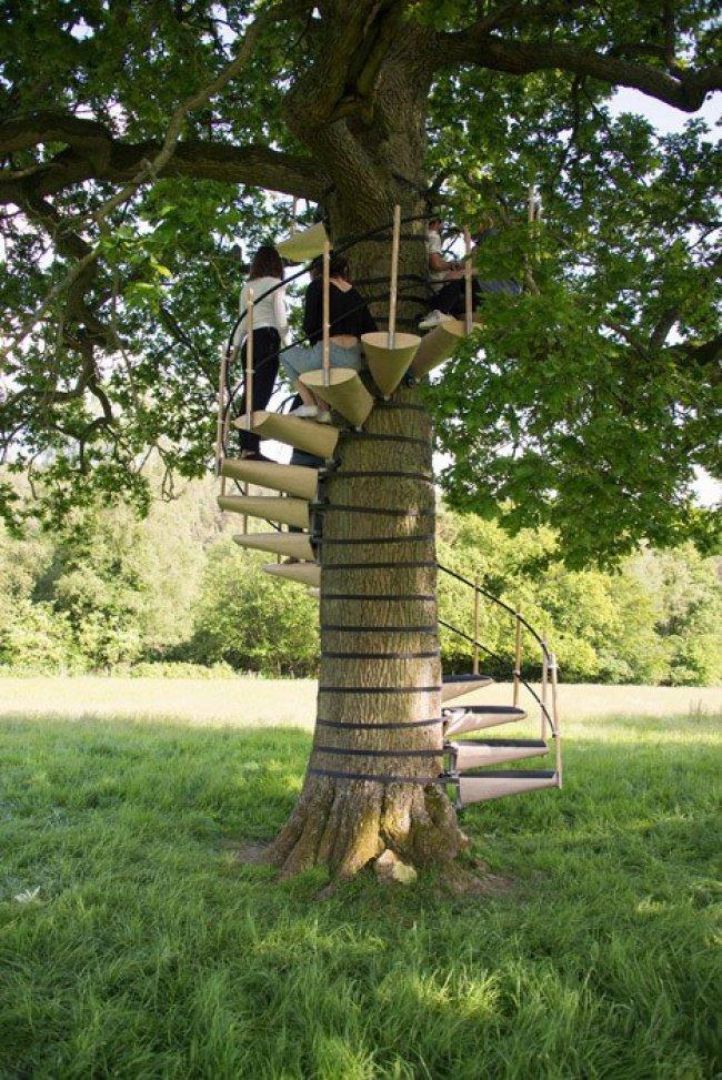 Un escalier modulable pour atteindre le sommet d'un arbre en toute sécurité
