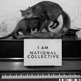 National Collective-6