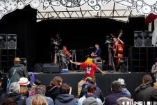 Festival Folk 50 - Belladrum 15 - More Festival Folk