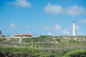 La Tratoria Del Farro Blanco Restaurant and Lighthouse View