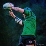 Baelo Patrimonio, patrocinador del Gernika Rugby