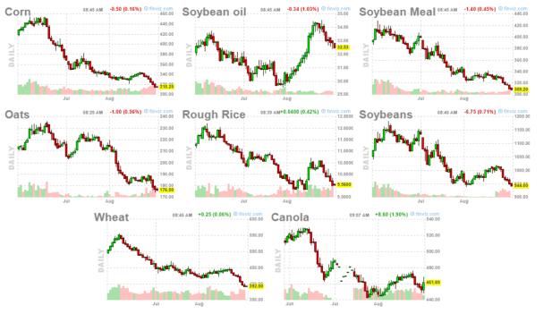 1-septiembre-grano% - La subida del dólar machaca al sector del grano