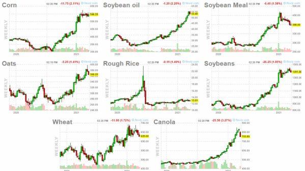 GRANOS-19-marzo-2021% - Otro cisne negro : el precio de los alimentos básicos
