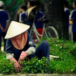 日本の証券会社が不思議な理由でベトナム上場企業の筆頭株主となったカラクリ
