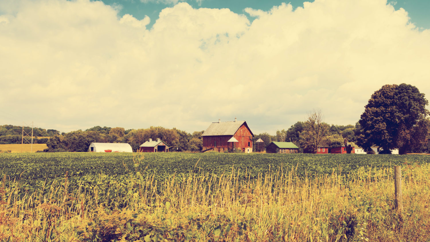 Podcast: AcreTrader Founder and CEO Carter Malloy on the future of U.S. farmland investing