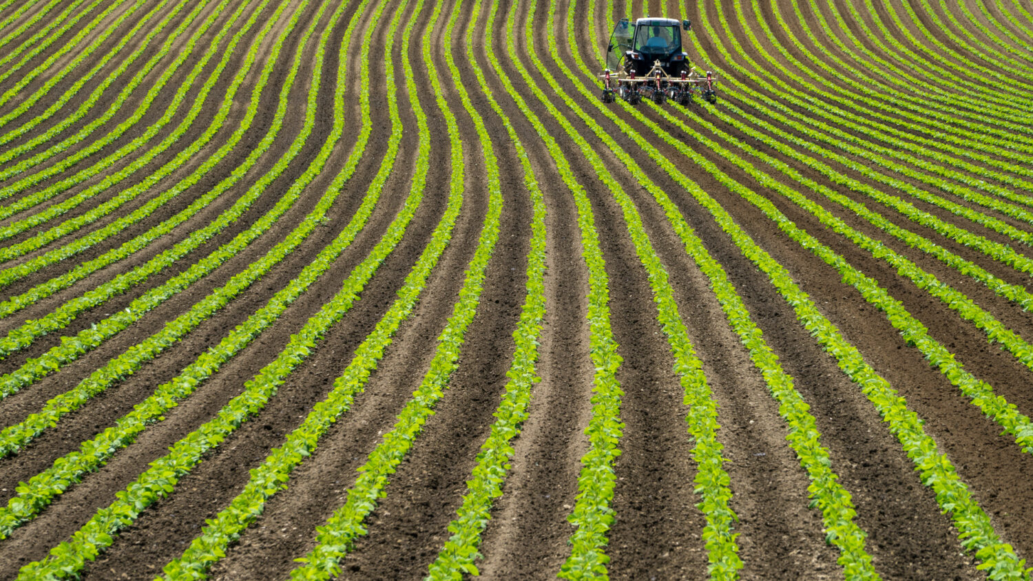 Ivy Endowment Veterans Plant Stake in Agriculture Real Assets Fund
