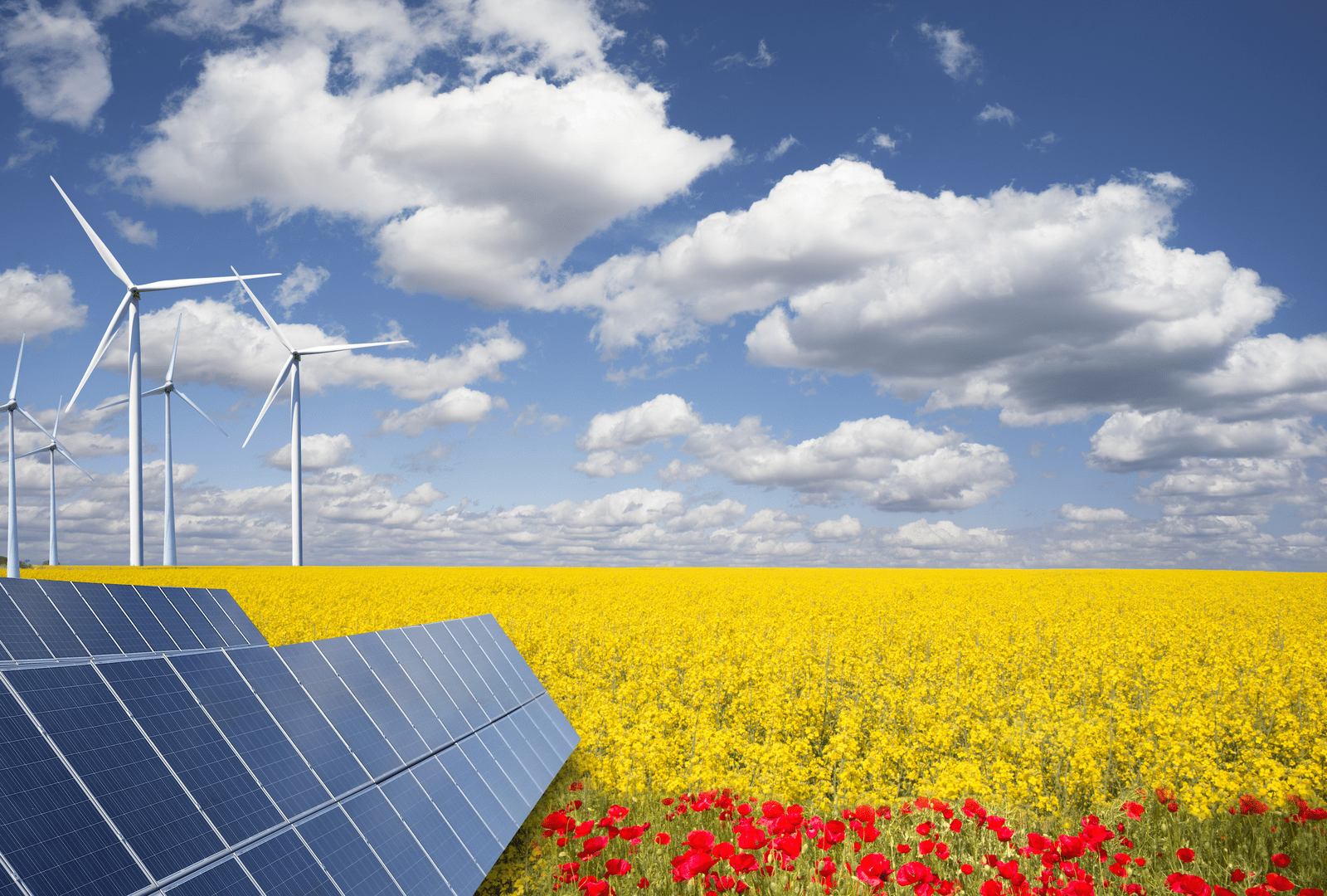 Canada's CDPQ invests $1bn in U.S. wind and solar powerhouse Invenergy